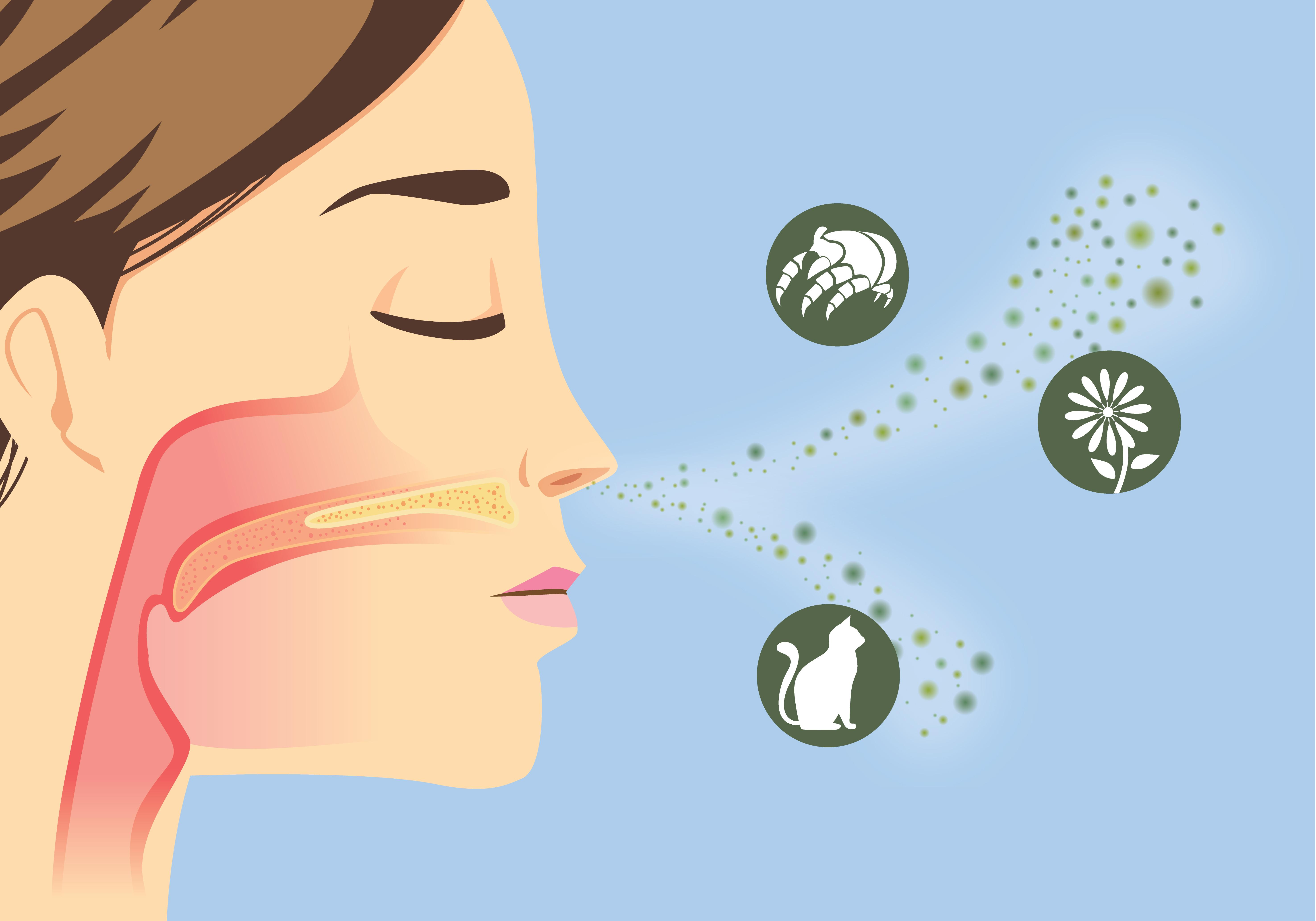 Healthy Homes, indoor air pollutants entering women's nose, Westchester, NY
